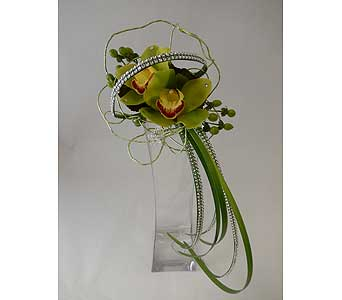 Green cymbidium orchid carry in Bloomington IL, Forget Me Not Flowers