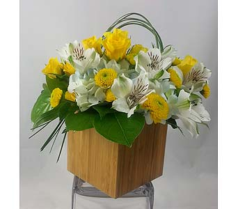 Bamboo Box Yellow in Raleigh NC, North Raleigh Florist