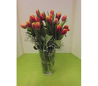 Tulips in a Vase in Manhasset NY, Town & Country Flowers