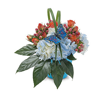 Berries in Blue in Huntington IN, Town & Country Flowers & Gifts