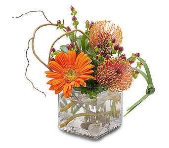 Orange Rocks in Schaumburg IL, Deptula Florist & Gifts, Inc.