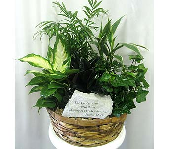 Keepsake Stone Planter - 10 inch basket in Wyoming MI, Wyoming Stuyvesant Floral