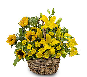 Basket of Sunshine in Holladay UT, Brown Floral