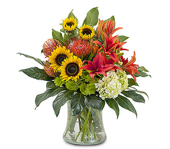 Harvest Sun in Spartanburg SC, A-Arrangement Florist