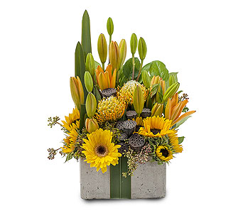 Urban Gift in send WA, Flowers To Go, Inc.