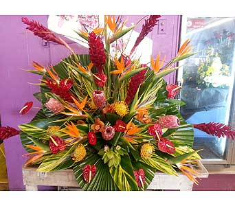 Custom in Ft. Lauderdale FL, Jim Threlkel Florist