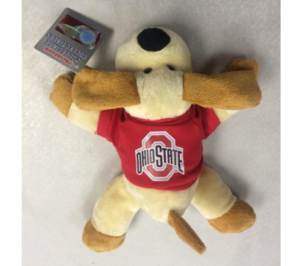 OSU Puppy Dog in Columbus OH, OSUFLOWERS .COM