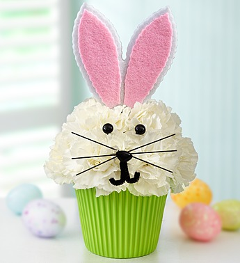 EASTER CUPCAKE in Oshkosh WI, House of Flowers