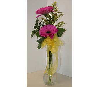Twice as Nice in Moorestown NJ, Moorestown Flower Shoppe