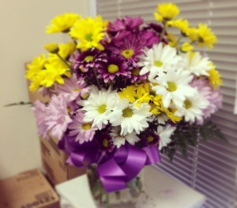 Daisy Love in Rockville MD, America's Beautiful Florist