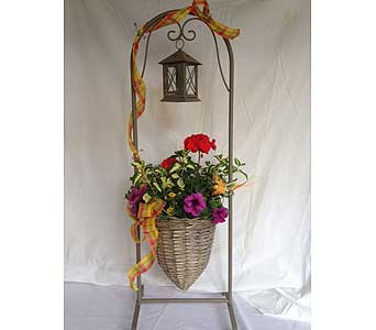 Annual Planter With Lantern in Crafton PA, Sisters Floral Designs