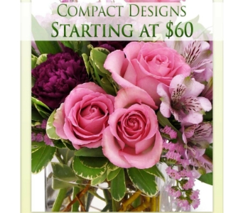 Modern Designs in Bradenton FL, Ms. Scarlett's Flowers & Gifts