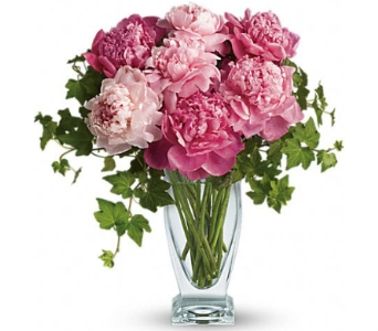 Perfect Peonies in Bradenton FL, Ms. Scarlett's Flowers & Gifts