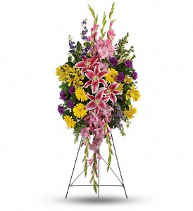 Rainbow Of Remembrance Spray in Houston TX, Colony Florist