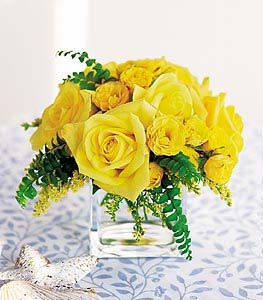 Yellow Rose Bravo! in Dallas TX, Petals & Stems Florist