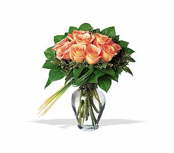 Perfectly Peachy Roses in Dallas TX, Petals & Stems Florist
