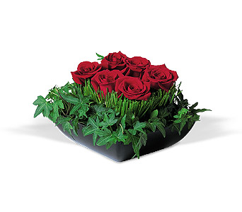 Simply Roses in Dallas TX, Petals & Stems Florist