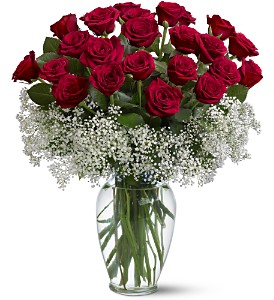 Field of Roses in Dallas TX, Petals & Stems Florist