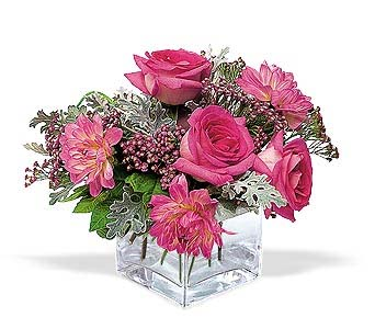 Perfect Pink Harmony in Dallas TX, Petals & Stems Florist