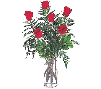 Half Dozen Roses by Petals & Stems in Dallas TX, Petals & Stems Florist
