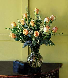 1 Dozen Peach/Apricot Roses in Dallas TX, Petals & Stems Florist