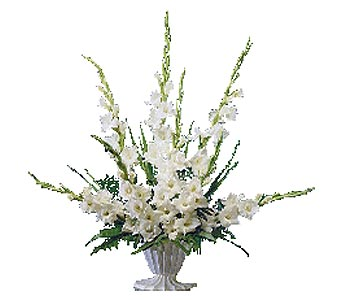 Teleflora 39 S End Of The Rainbow By Petals Stems