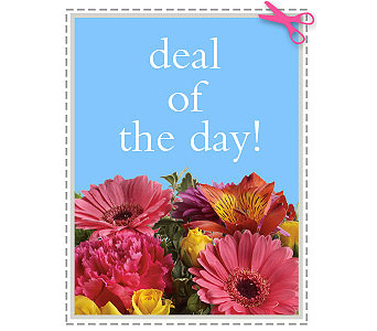 Deal of the Day in Calgary AB, The Tree House Flower, Plant & Gift Shop