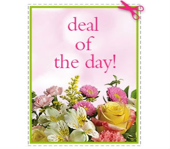Deal of The Day in Birmingham AL, Norton's Florist