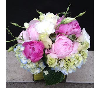 SOFTEST KISS BOUQUET in Bellevue WA, CITY FLOWERS, INC.
