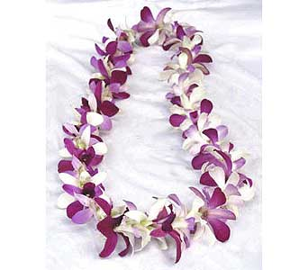 Purple Dendrobium Orchid Lei in Northfield MN, Forget-Me-Not Florist