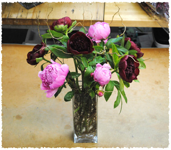 Peony Garden Fusion in New York NY, Starbright Floral Design