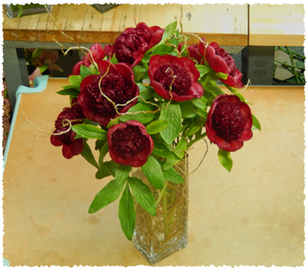 Deep Red Peony Paradise in New York NY, Starbright Floral Design