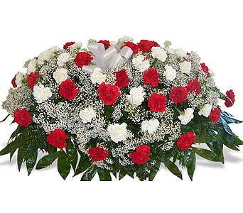 1/2 Pall of Red and White Carnations in Nashville TN, Flowers By Louis Hody
