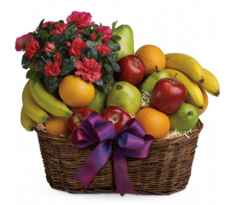 Fruits and Blooms Basket in Norristown PA, Plaza Flowers