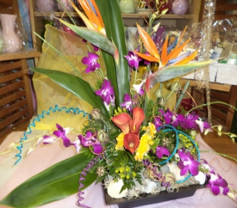 Bright and Funky  in Milford OH, Jay's Florist