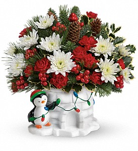 Send a Hug Deck The Igloo by Teleflora in San Angelo TX, Bouquets Unique Florist