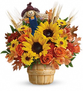 Teleflora's Smiling Scarecrow Bouquet in Bismarck ND, Ken's Flower Shop