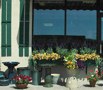 FMN-BP013 in Northfield MN, Forget-Me-Not Florist