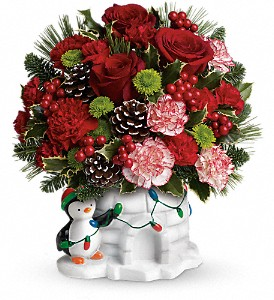 Send a Hug Christmas Cutie by Teleflora in Oakland CA, Seulberger's Florist & Gifts