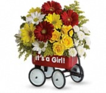 Baby's Wow Wagon-Girl in Concord CA, Jory's Flowers