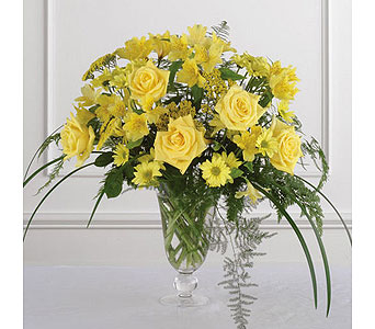 Yellow Elegance in Moline IL, K'nees Florists