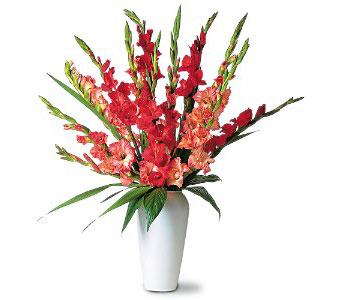Glorius Gladioli in New York NY, CitiFloral Inc.