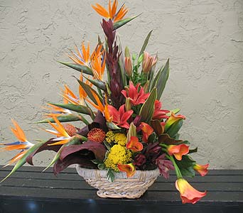 Tropical Arrangement in Ocala FL, Heritage Flowers, Inc.