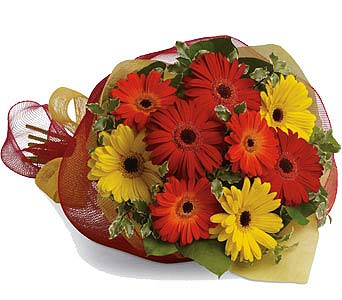 Mixed Gerbera Bouquet in Laval QC, La Grace des Fleurs