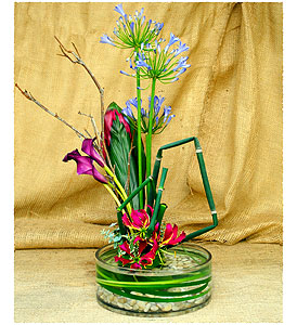 Ikebana Lilly Pad in New York NY, Starbright Floral Design