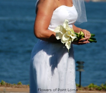 Wendy in San Diego CA, Flowers Of Point Loma