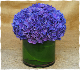 Blue Moon in New York NY, Starbright Floral Design