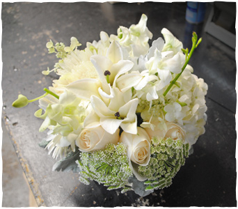 Nucleus of White in New York NY, Starbright Floral Design