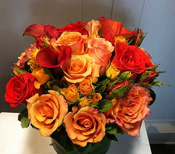 Rose Medley in Thornhill ON, Orchid Florist