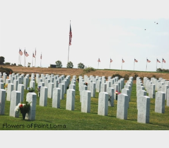 Miramar National  Cemetery in San Diego CA, Flowers Of Point Loma